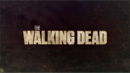 The Walking Dead / 2ª Temporada